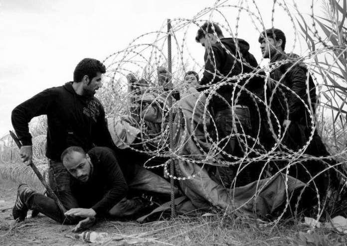 Migrants-Image-Courtesy-Freedom-House-696x494
